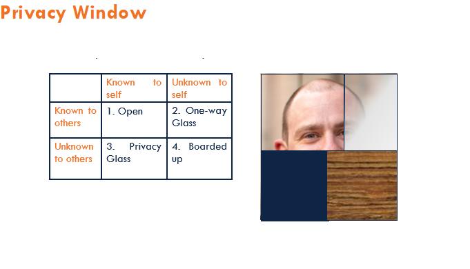 Privacy Window